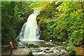 J3996 : Intruders at Glenoe waterfall : Week 41