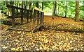 J1147 : Footbridge and leaves, Huntly, Banbridge : Week 42