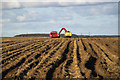 TA0215 : Potato Harvesting near Northwold Farm by David Wright