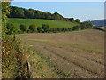 SU7997 : Farmland, Radnage by Andrew Smith