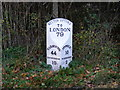 TM2951 : Milepost on B1438 Yarmouth Road by Adrian Cable