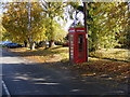 TM3569 : Peasenhall Telephone Box by Adrian Cable
