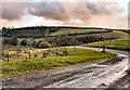 SX3862 : Showery sky near Hatt by Mick Lobb