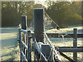 SU8284 : Gate, fences and cobwebs, Hurley : Week 43