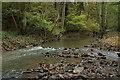 SO7676 : Dowles Brook by Philip Halling