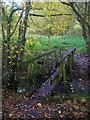 TQ2412 : Footbridge near Brook House by Simon Carey