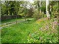 SX1268 : Track by Cardinham Church by Colin Park