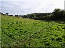 SU9397 : Footpath heading down past Wheatley Wood by Shaun Ferguson
