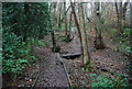 TQ5942 : Boardwalk path through Barnetts Wood by Nigel Chadwick