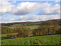SU8597 : Farmland, Lower North Dean by Andrew Smith
