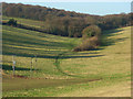 SP9404 : The valley between Asheridge and Bellingdon by Andrew Smith