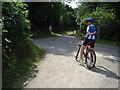 SX0873 : Bodmin to Wenfordbridge railway by David Ashcroft