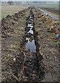 SE4105 : Drainage ditch by Steve  Fareham