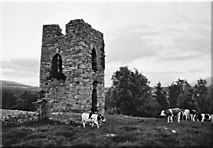 S7235 : Tower at Coolhill, Co. Kilkenny by Kieran Campbell