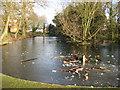 SU9282 : Burnham: Lent Green Pond by Nigel Cox