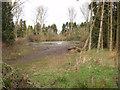 SU8187 : Pond by Woodend Farm by David Hawgood