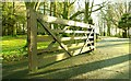 J3067 : Gate, Dixon Park, Belfast (3) : Week 3