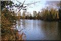 ST6462 : Hunstrete Lake by Rick Crowley