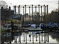 TQ2983 : St Pancras Lock : Week 4