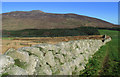 J3422 : Mourne Wall near Annalong Wood by Rossographer