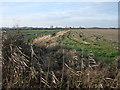 TL4777 : Stubble field, Grunty fen by Hugh Venables