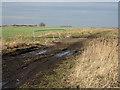 TL4984 : Bridge on Byall Fen by Hugh Venables