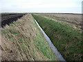 TL5084 : Fenland ditch by Hugh Venables