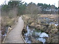 SU8462 : Boardwalk at Wildmoor Heath by don cload