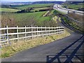 SY7994 : Bridleway beside the A35(T) : Week 8