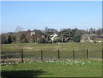 SP9277 : Parkland at the Cranfords by Michael Trolove