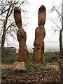 ST6854 : Big squirrels by Derek Harper