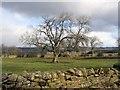 NY9072 : Farmland near Heatheridge : Week 10
