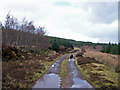 NG3052 : Forestry road, Greshornish Forest by Richard Dorrell