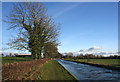 SJ6153 : Late afternoon sun on the canal, near Bank Farm by Espresso Addict