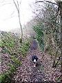 SP8908 : Footpath past High Meadow Farm by Chris Reynolds