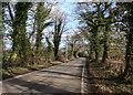 SJ6148 : Wrenbury Heath Road, Sound Heath by Espresso Addict