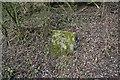 SU4089 : Slab in the bank by Bill Nicholls