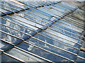 SX4064 : Detail of the glasshouse roof in Pentillie Castle kitchen garden by Rod Allday