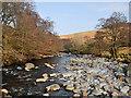 NN7116 : Water of Ruchill : Week 11