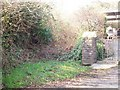 SN1710 : Overgrown Right of Way, Llanteg by welshbabe