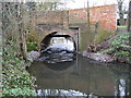 SU8771 : The Cut at Osbornelane Bridge, Newell Green by Nigel Cox