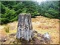 NX3481 : Balunton Hill trig pillar by Rob Woodall