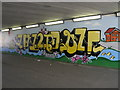 TL1895 : Underpass Mural, Hampton by Michael Trolove