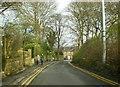 SD7311 : Oaks Lane by Alexander P Kapp