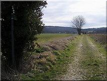 SP8307 : Footpath to Ellesborough by Shaun Ferguson