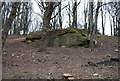 TQ5639 : An outcrop of Tunbridge Wells Sandstone near the Happy Valley Rocks by Nigel Chadwick