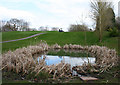SJ5443 : Pond on the Hill Valley Golf & Country Club golf course by Espresso Addict