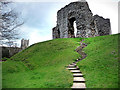 SZ1592 : Christchurch Castle by Chris Gunns