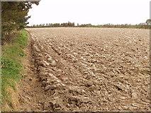 S9705 : Ploughed furrowed field near Millroad by David Hawgood