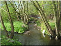 SP0581 : The Bourn Joins The River Rea, Ten Acres, Stirchley by Roy Hughes
